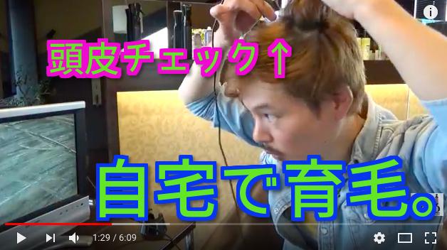 自宅での育毛方法で髪を元気にする方法